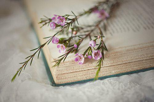 libro-scrittura
